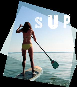 Redshark Fuerteventura Sup - Sup Courses - Sup Camp - Sup Adventure Trip Lobos Island